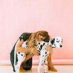 adorable-animal-beautiful-1766478